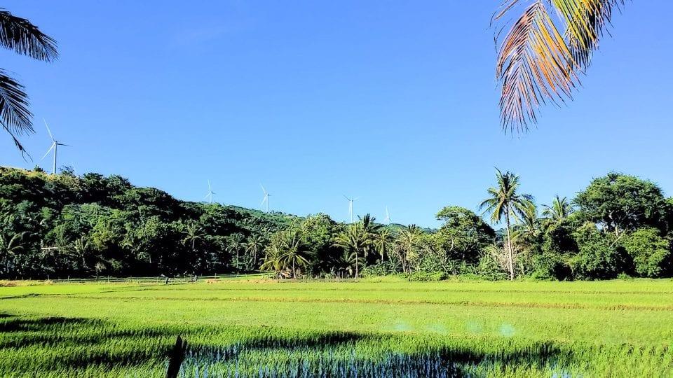 Philippinen Reisefelder