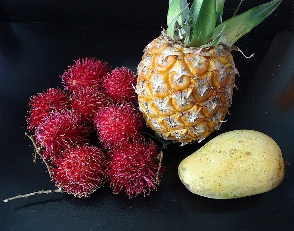 Früchte Südostasien