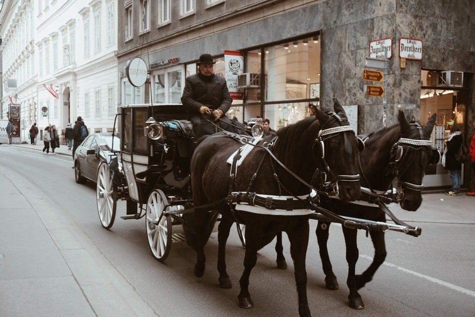 Kutscher in Wien