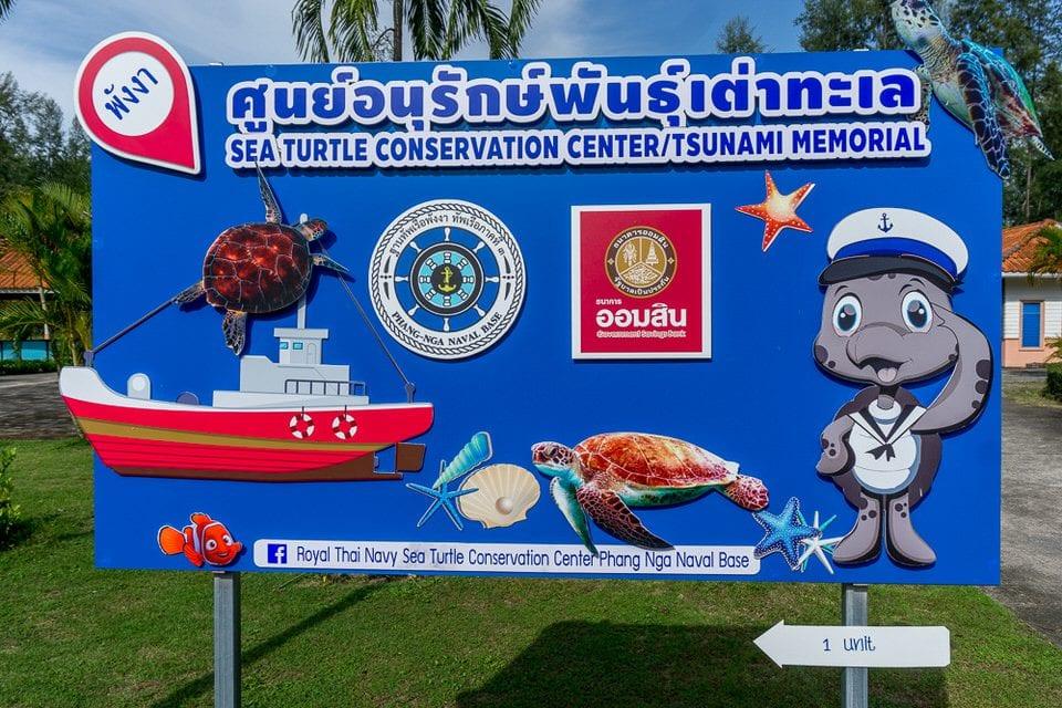 Sea Turtle Conservation Center Khao Lak Ausflüge und Tipps