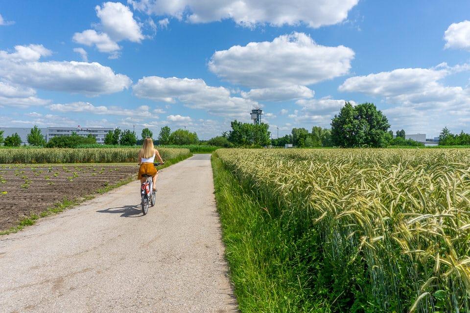 Nürnberg Knoblauchsland Felder Fahrradtour